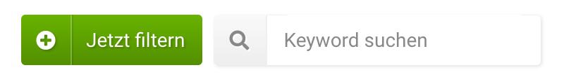 Der Jetzt filtern Button oberhalb der Tabelle sowie ein vorgefertigter Suchschlitz um einen bestimmten Keywordfilter zu setzen.