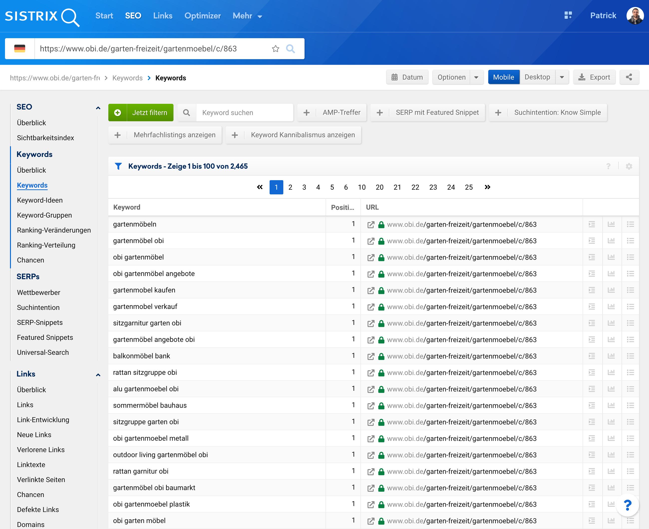 Ansicht der Keywords-Seite der Toolbox bei Eingabe einer einzelnen URL in die Suchleiste.