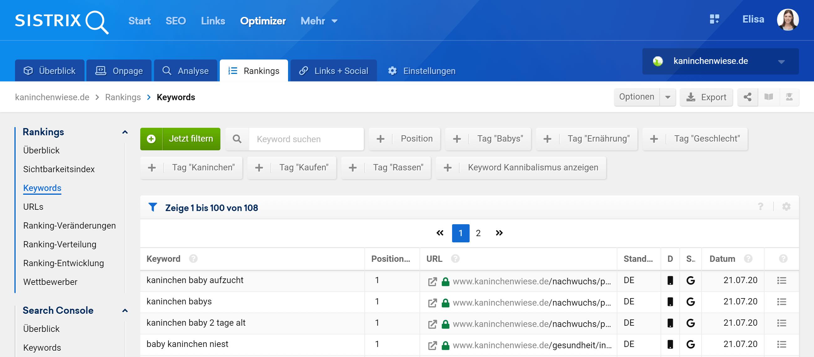 Eigene Keywords in einem Optimizer Projekt