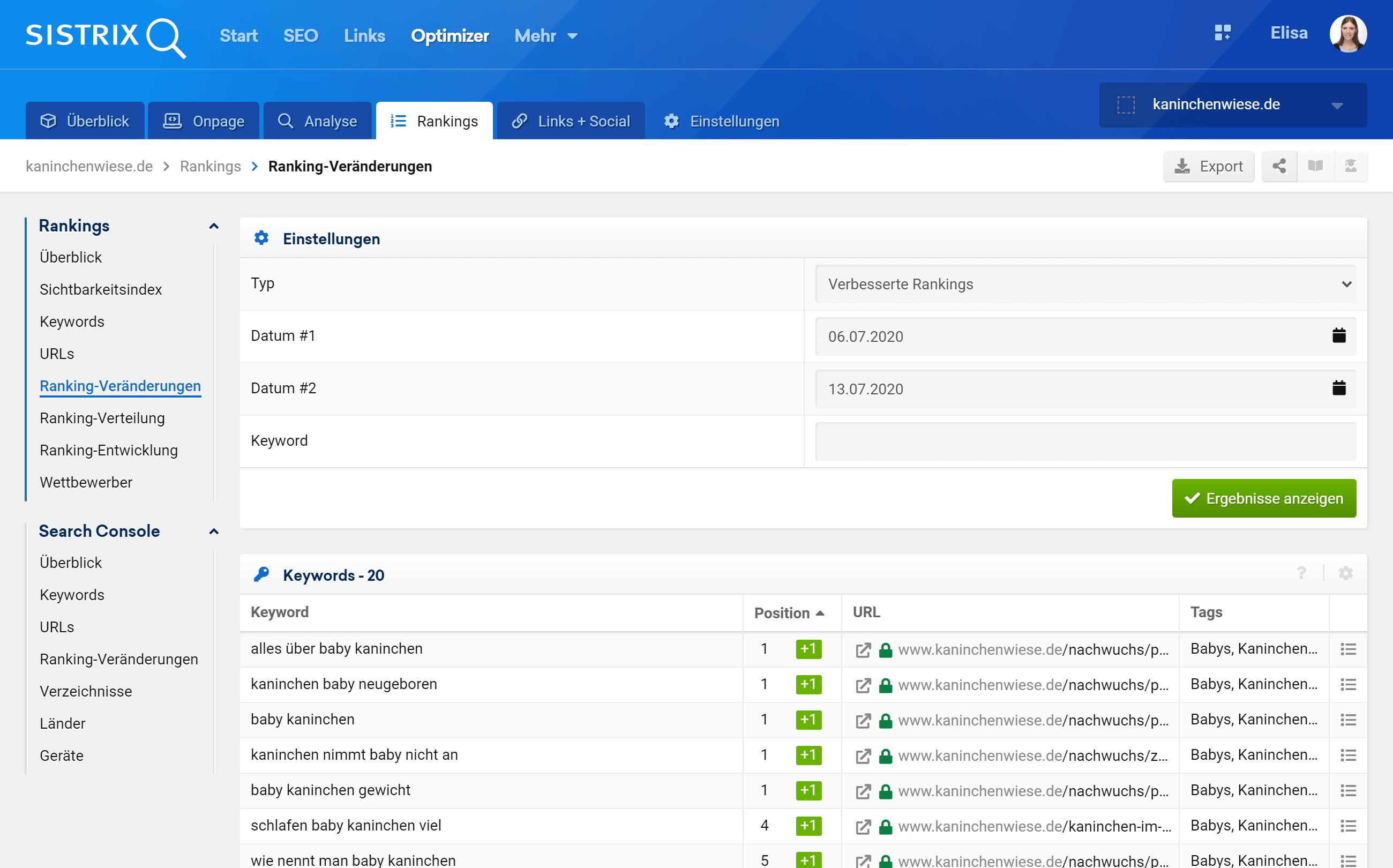 Der Bereich Ranking Veränderungen in dem SISTRIX Optimizer