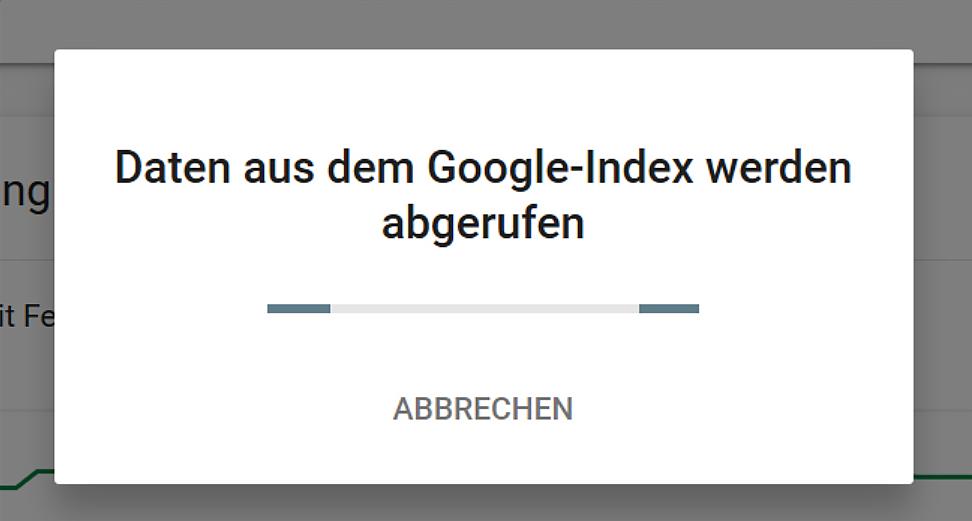 Google überprüft nun die eingegebene URL.