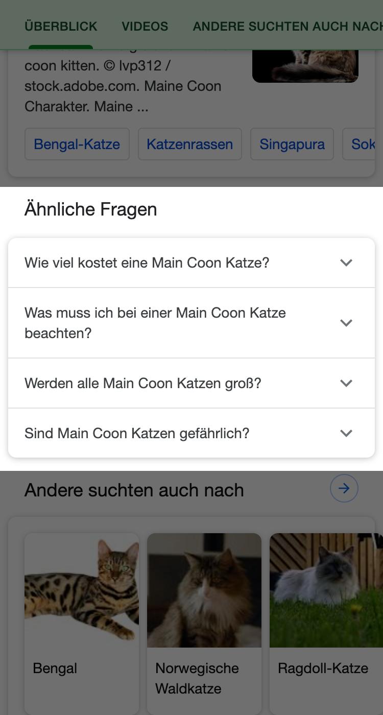 """""""Ähnliche Fragen""""-Box in den Suchergebnissen von Google."""